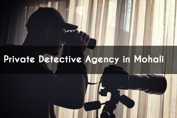 detective agency mohali