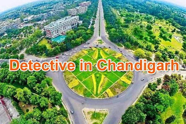 detective-agency-in-Chandigarh