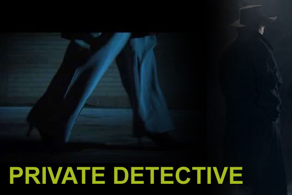 venus private detective