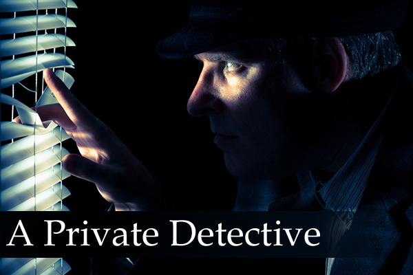 career of detectives